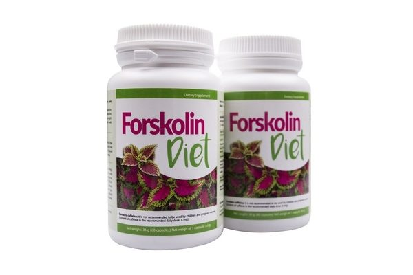 forskolin diet cena